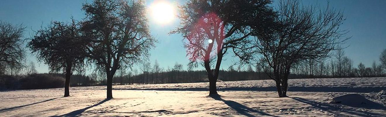 Winterlandschaft | Hospizverein Bayreuth | Hospizbewegung